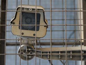 El tiempo para inscribir las cámara de videovigilancia será de un año a partir de la creación del registro.